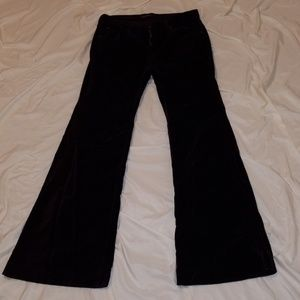 James Jeans Humphrey Purple Velvet Pants, size 29
